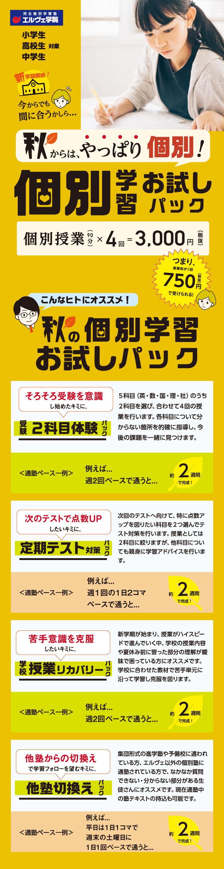 秋の個別学習お試しパック/個別授業(90分)×4回=3,000円(税抜)